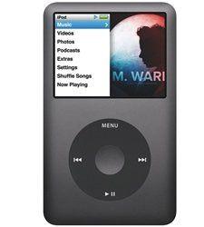 iPod Parts
